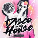 Disco In The House (Sample Pack WAV)