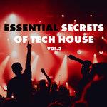 Essential Secrets Of Tech House Vol 4