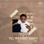 Till We Meet Again EP