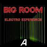 Big Room Electro Experience