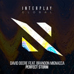 Perfect Storm (Extended Mix)