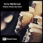 Wrong Things Feel Right (Explicit)