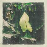 Lailonie (The Remixes: Part 1)
