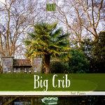 Big Crib (Original Mix)