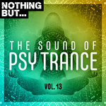 Nothing But... The Sound Of Psy Trance Vol 13