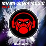 Miami Ultra Music Vol 5 Compiled By Bad Monkey