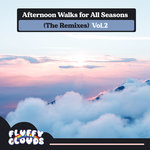 Afternoon Walks For All Seasons (The Remixes) Vol 2