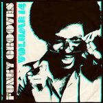 Funky Grooves Vol 14