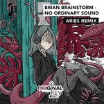 No Ordinary Sound (Aries Remix)