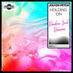 Holding On (Random Soul Extended Mix)