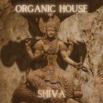 Organic House - Shiva