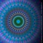 Kaleidoscopic Blooms II