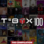 T's Box 100 - The Compilation