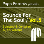 Papa Records presents Sounds For The Soul Vol 5