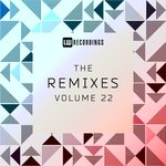The Remixes Vol 22