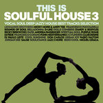 This Is Soulful House Vol 3