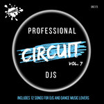 Professional Circuit DJs Compilation Vol 7