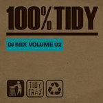 100% Tidy Vol 2