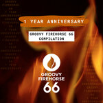 Groovy Firehorse 66 - 1 Year Anniversary (Radio Edits)