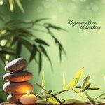 Regenerative Vibration