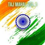 Taj Mahal Vol 1