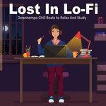 Lost In Lo-Fi