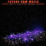 Future EDM Musik