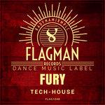 Fury Tech House