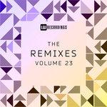 The Remixes Vol 23