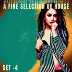 A Fine Selection Of House - Set.4