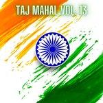 Taj Mahal Vol 13