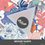 Groover Talents Vol 2 (Extended Mix)