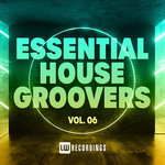 Essential House Groovers Vol 06