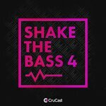 Shake The Bass 4