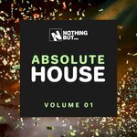 Nothing But... Absolute House Vol 01