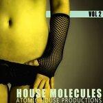 House Molecules Vol 2