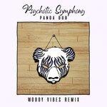 Psychotic Symphony (Woody Vibes Remix)