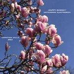'Happy Sunday' - Anticorona Electronica