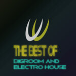 The Best Of Bigroom & Electro House