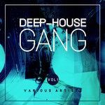 Deep-House Gang Vol 1