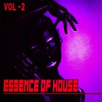 Essence Of House 2 - House & Deep House Collected