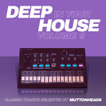 Deep In Your House, Vol 9 - Classic Tracks Selected By Muttonheads