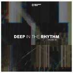 Deep In The Rhythm Vol 40