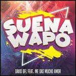 Suena Wapo (Hardbass Mix)