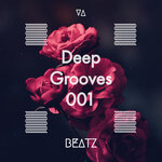Deep Grooves 001