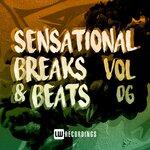 Sensational Breaks & Beats Vol 06