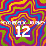 Psychedelic Journey 12