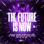 The Future Is Now Vol 1 (Extended Mixes)