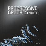 Progressive Grooves Vol 13
