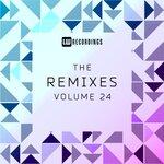 The Remixes Vol 24